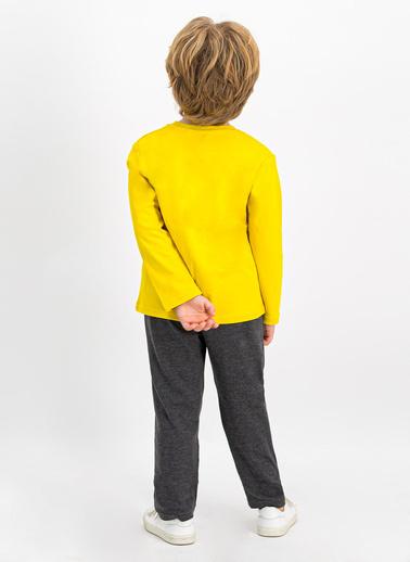 Roly Poly  Koyu Petrol Erkek Çocuk Pijama Takımı Sarı